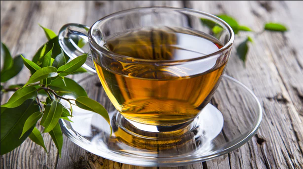 Green tea compound holds promise for preventing heart attacks