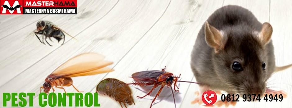 Jasa Pest Control 2a1de22fd2