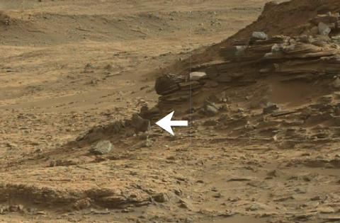 Strange Creature Spotted On Mars?