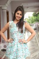 Nikki Galrani at Prema leela pelli gola trailer Launch ~  Exclusive 057.JPG