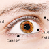 This Surprising 8 Things Your Eyes Are Trying To Tell You About Your Health!