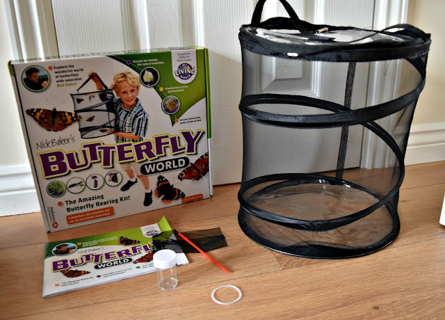 Interplay Butterfly World My Living World Review