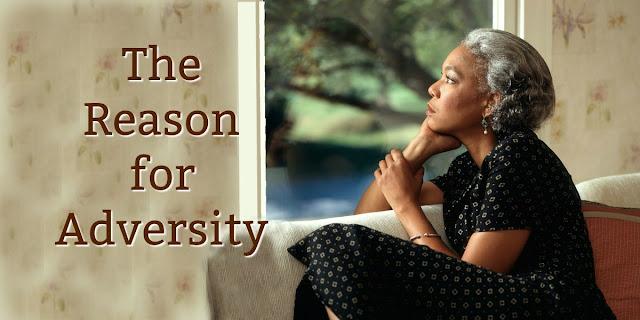 Beauty From Adversity -Romans 5:3-5