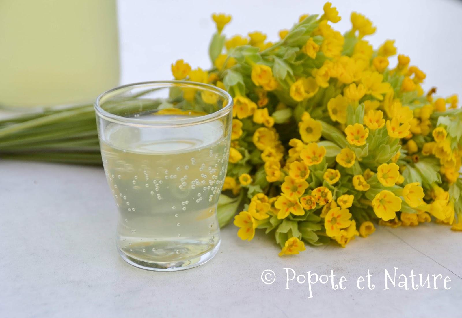 Popote et nature limonade aux fleurs de printemps un rafra chissement original - Initiatives fleurs et nature ...