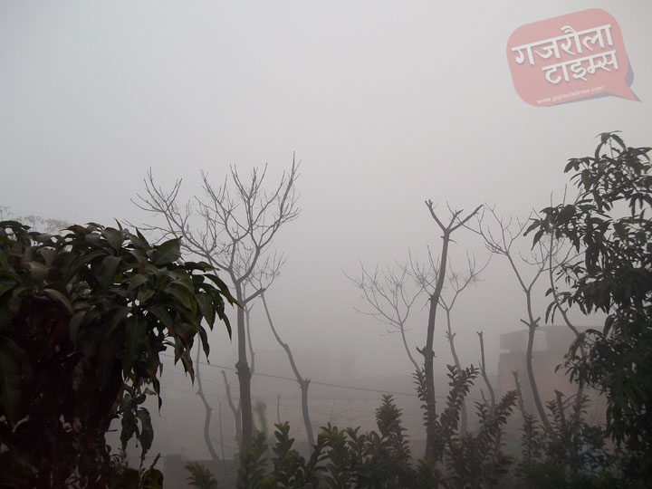 गजरौला-तस्वीर-कोहरा-सर्दी