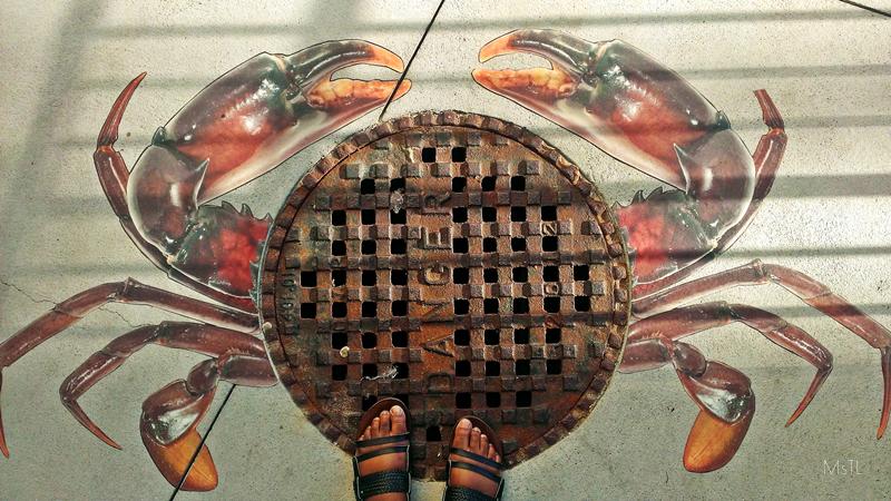 Ripleys-Aquarium-Crab