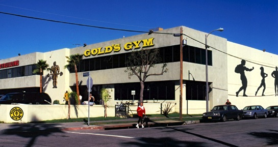 Mobile Phones Fan: Google Buys Gold's Gym...Revenge of the ...