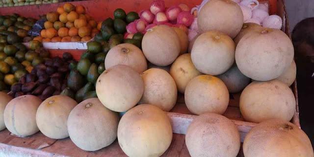 Buah Melon Songlor Kangean Sumenep Yang Laris Manis