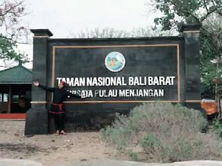 Taman Nasional Bali Barat, Wisata Pulau Menjangan