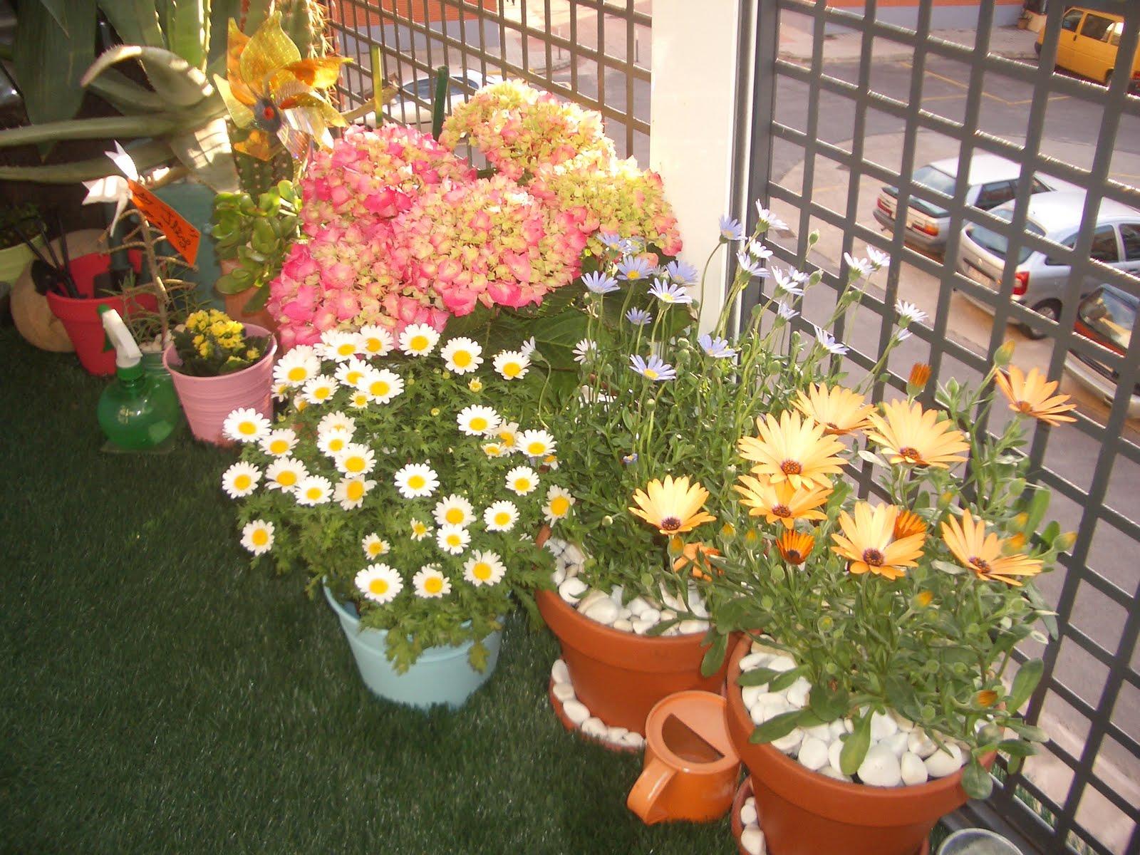 Corticheando Flores De Temporada