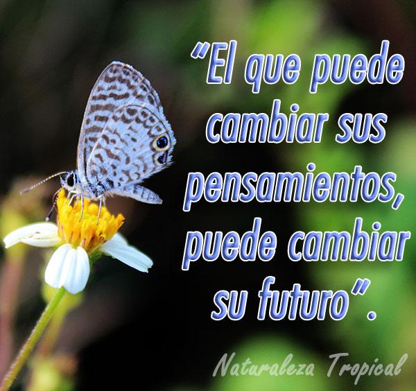 El que puede cambiar sus pensamientos, puede cambiar su futuro.
