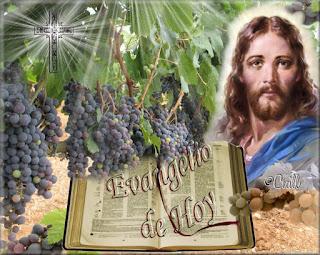 Resultado de imagen para Marcos 12,1-12