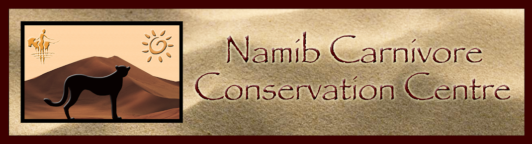 The Namib Carnivore Conservation Centre