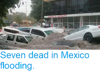 http://sciencythoughts.blogspot.com/2018/06/seven-dead-in-mexico-flooding.html