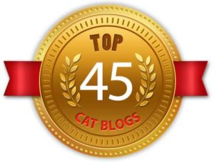 WE ARE IN THE TOP 45 CAT BLOGS