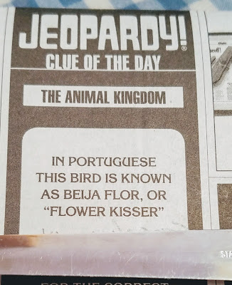 Jeopardy Clue of the Day: 'In Portuguese this bird is known as beija flora, or 'flower kisser''