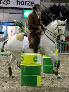 Jaakko Nuotio, Rohan talli, working equitation, Tampereen hevosmessut