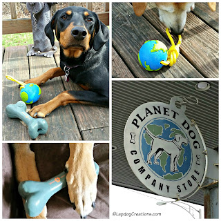 planet dog company store toys rescue