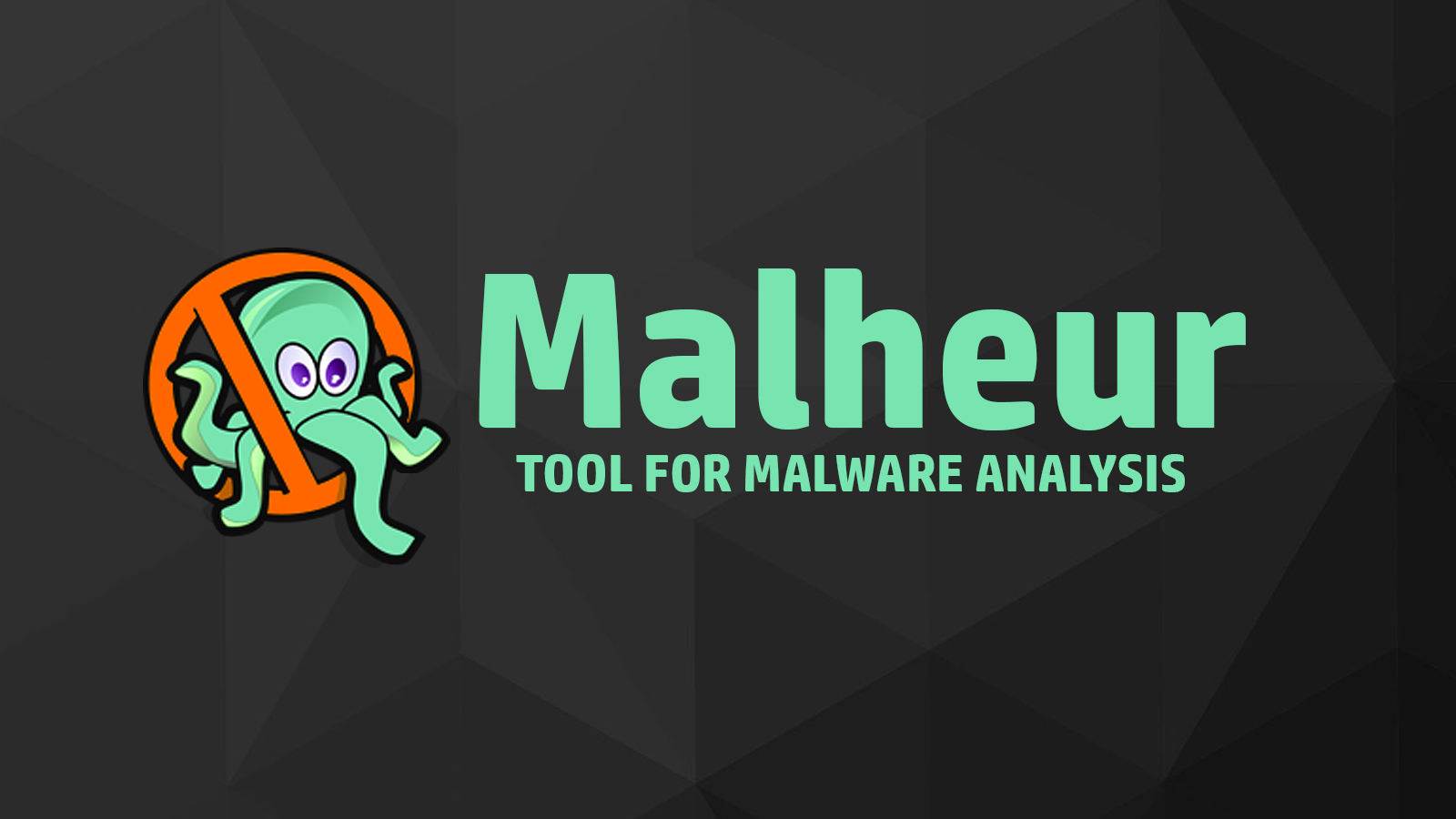 Malheur - Automatic Analysis of Malware Behavior