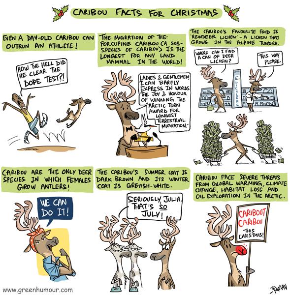Reindeer Migration Facts For Kids