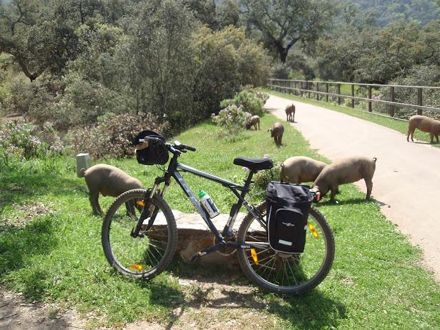 Resultado de imagen de Ruta en bicicleta por la sierra norte de Sevilla