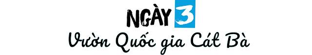 kinh-nghiem-du-lich-cat-ba-2019-3-ngay-2-dem (2)