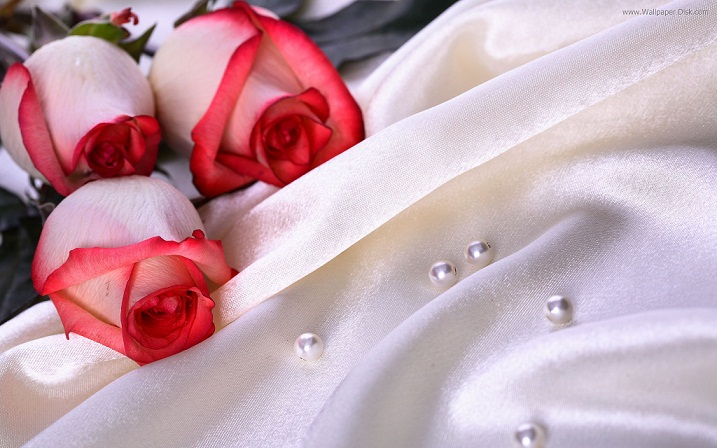 Wedding%2Bflowers%2Bred%2Broses