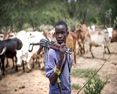 Fulani with a Gun