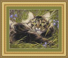 Котейка в траве