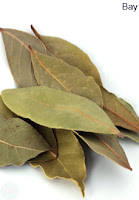 bay, bay leaf