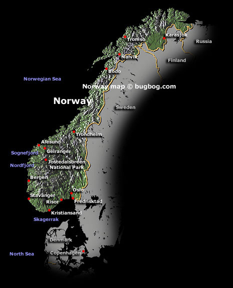 La cucina norvegese fin dalle sue origini ha fatto