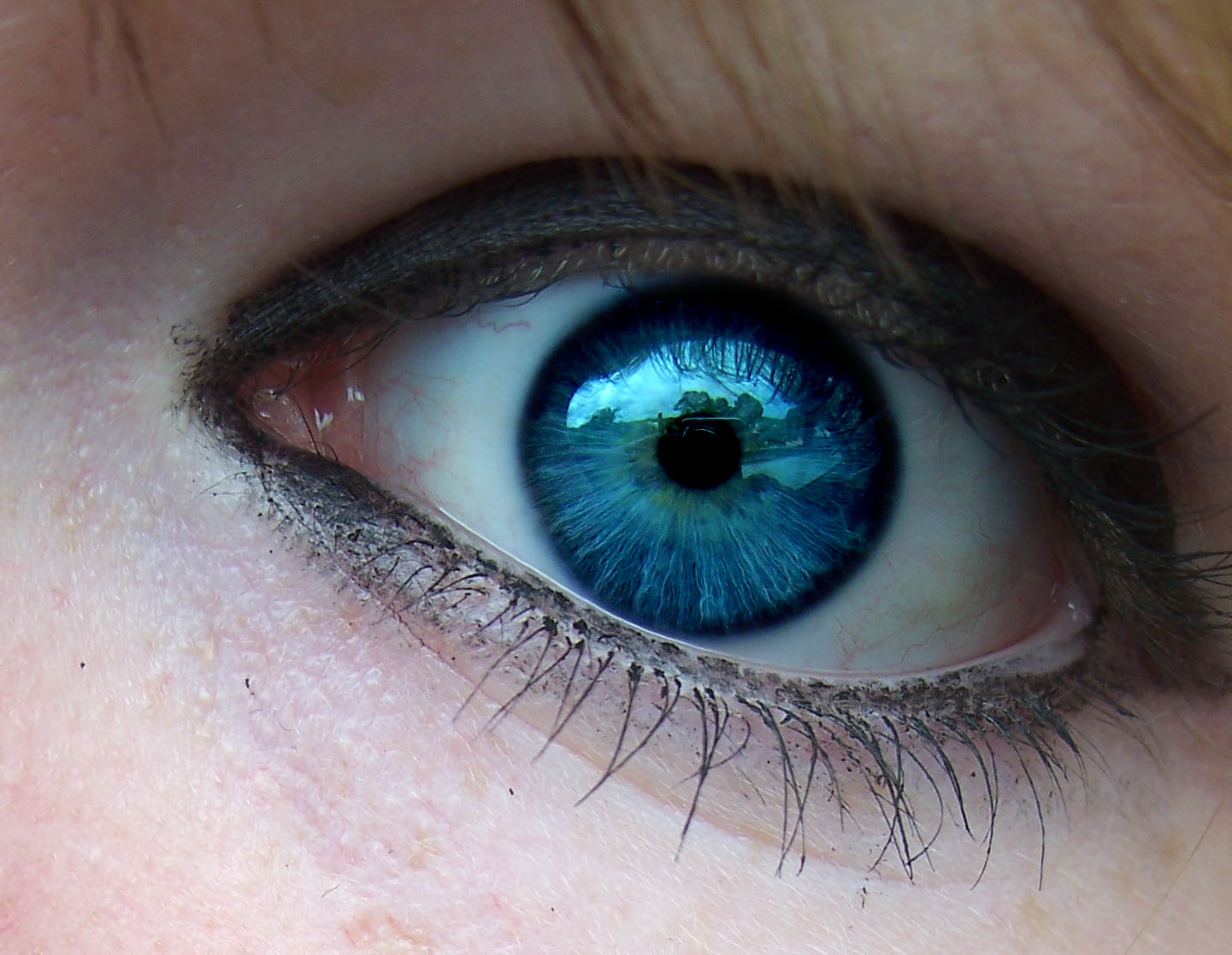 Beautiful blue eyes close up - Mobile wallpapers