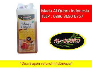 Jual Madu Al Qubro Apel 1KG, 0896 3680 0757, Grosir Madu Al Qubro Apel 1KG