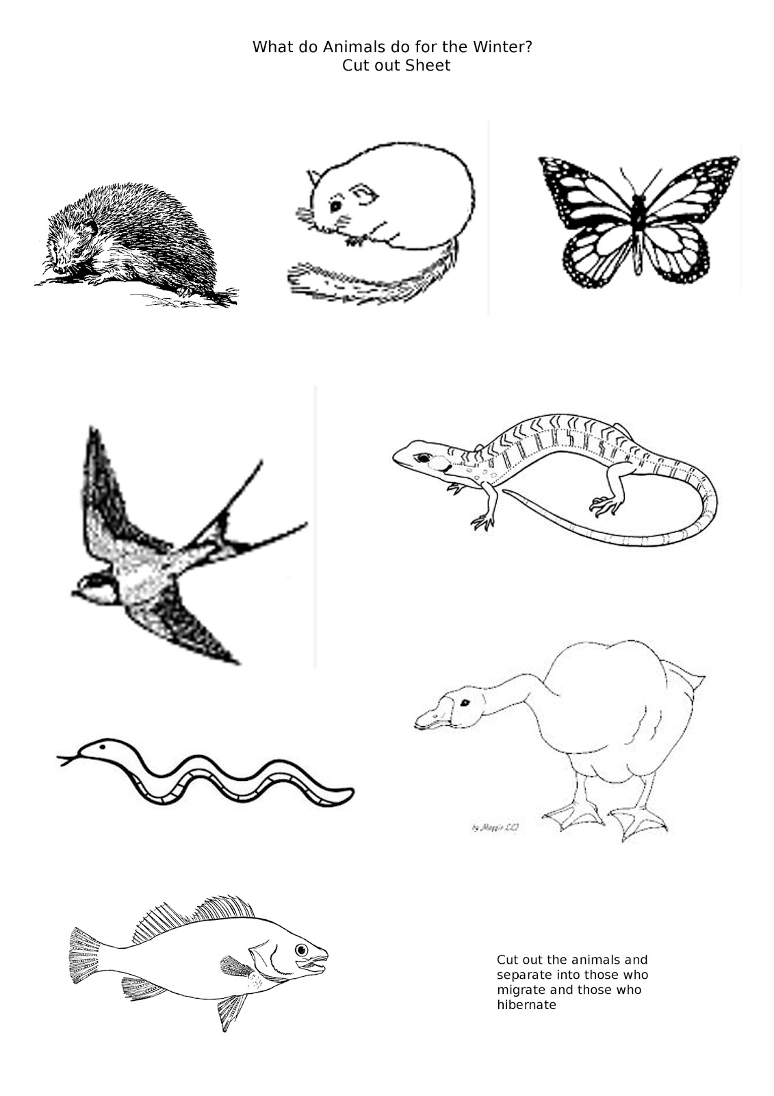 Printable Winter Animals Sorting Worksheet