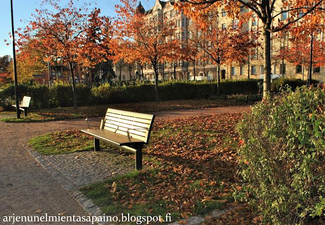 Helsinki, Kaivopuisto, penkki, aurinko, lokakuu, ruska, tunnelmaa, valokuvaus