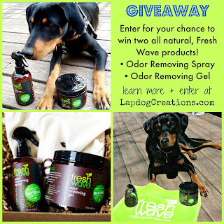 fresh wave odor removal giveaway doberman rescue dog