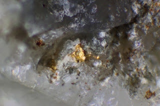 smal gold nugget in quartz