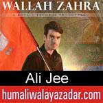 https://www.humaliwalayazadar.com/2015/07/ali-jee-nohay-2007-to-2016.html