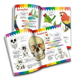 Paket Buku My First Questions & Answers (SKI) Penerbit Imagioo Books