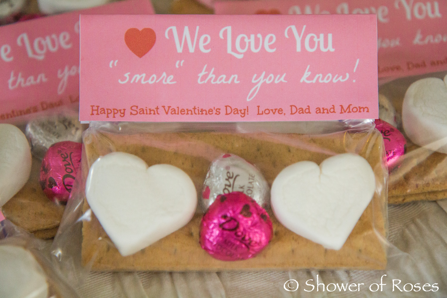 Shower of Roses: St. Valentine\'s Day Cards & Party