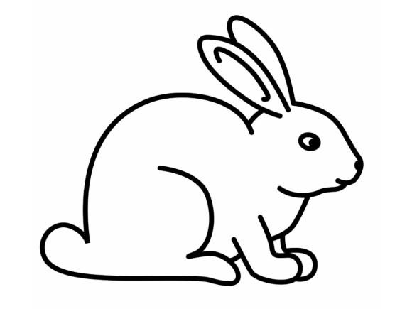 87+ Gambar Sketsa Fauna Mudah Paling Keren