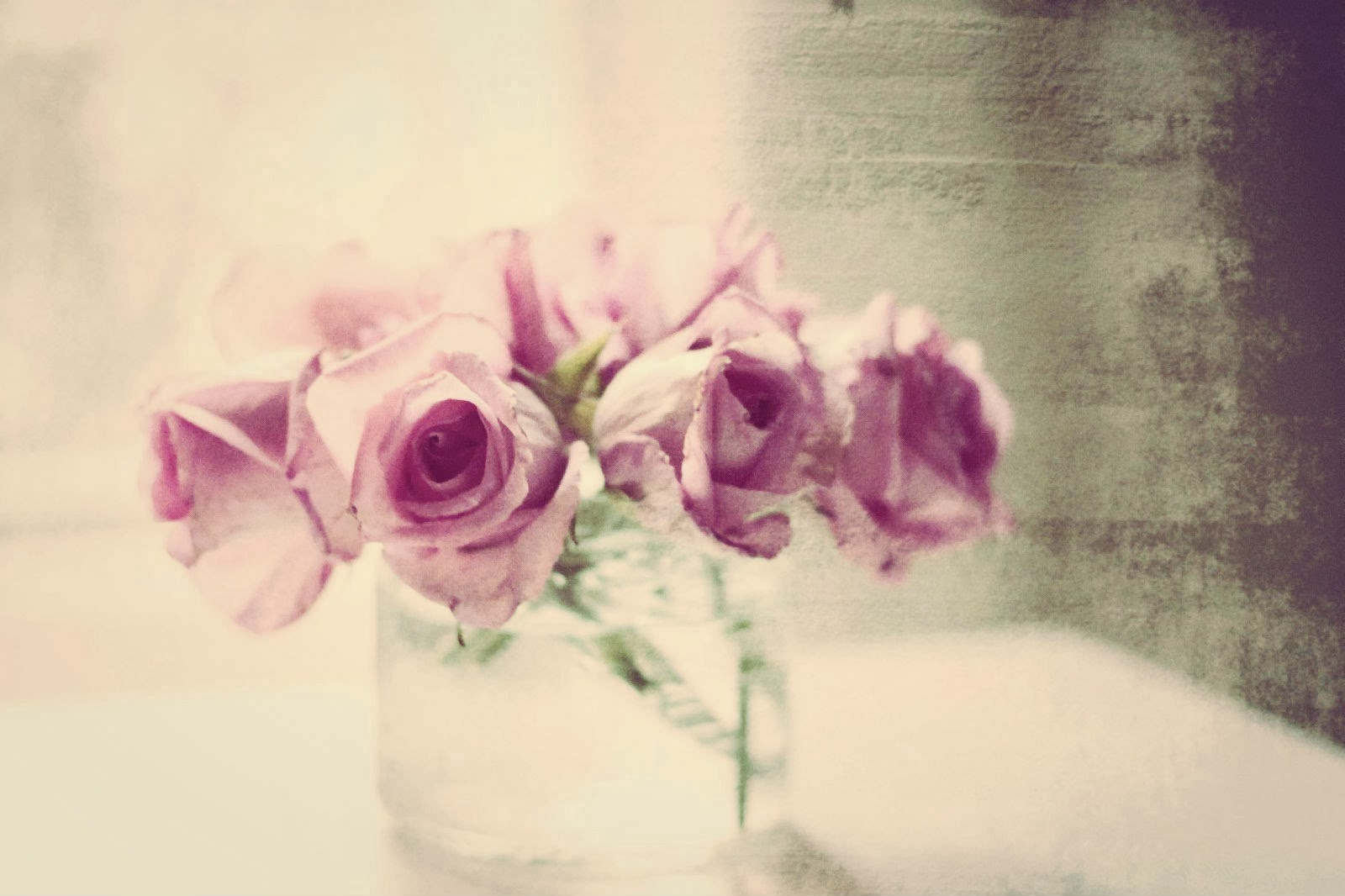 pink roses textured in a vase