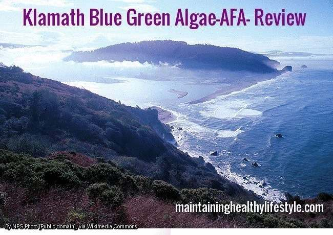 Klamath Blue Green Algae-AFA- Review