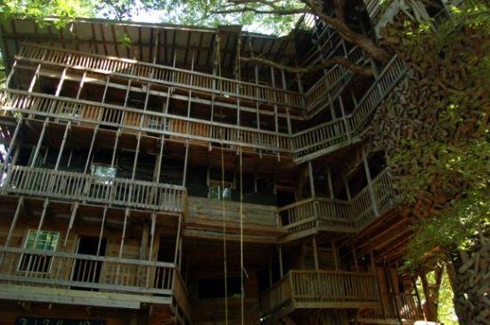 Worlds Tallest Tree House Crossville Photos Photobundle