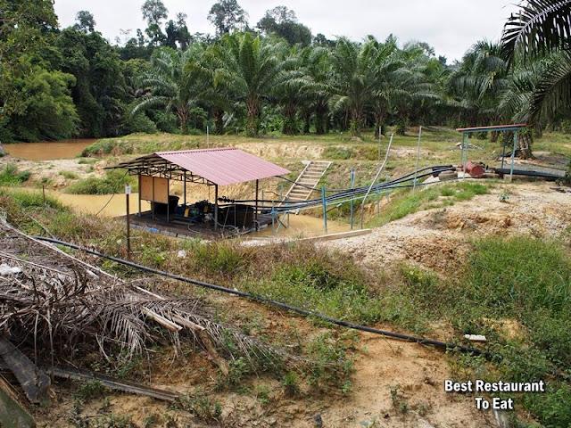 Water Pump Station at Durian Wonderland