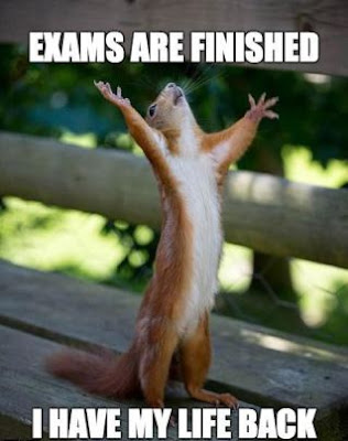 exams-finished-my-life-is-back-whatsapp-dp