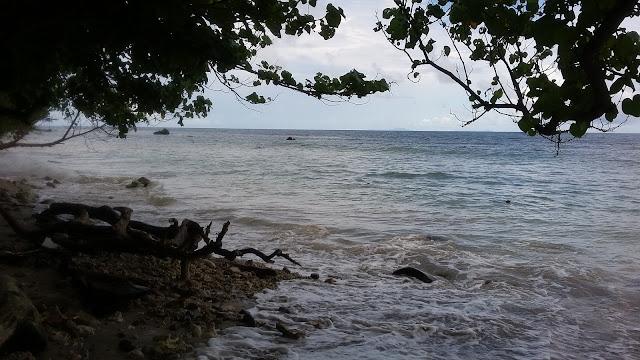 Eksotisnya-lokasi-pesisir-pantai_94