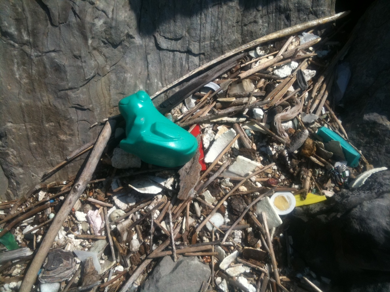 The Nearsighted Beachcomber Bath Toy Lost At Sea Found In