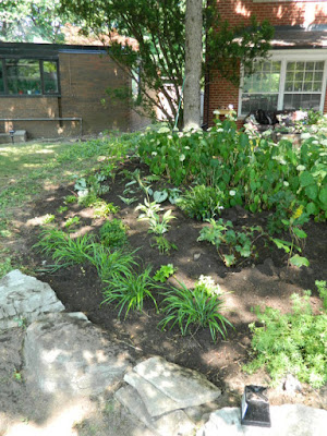 York Mills St. Andrews Toronto front garden renovation after by Paul Jung Gardening Services