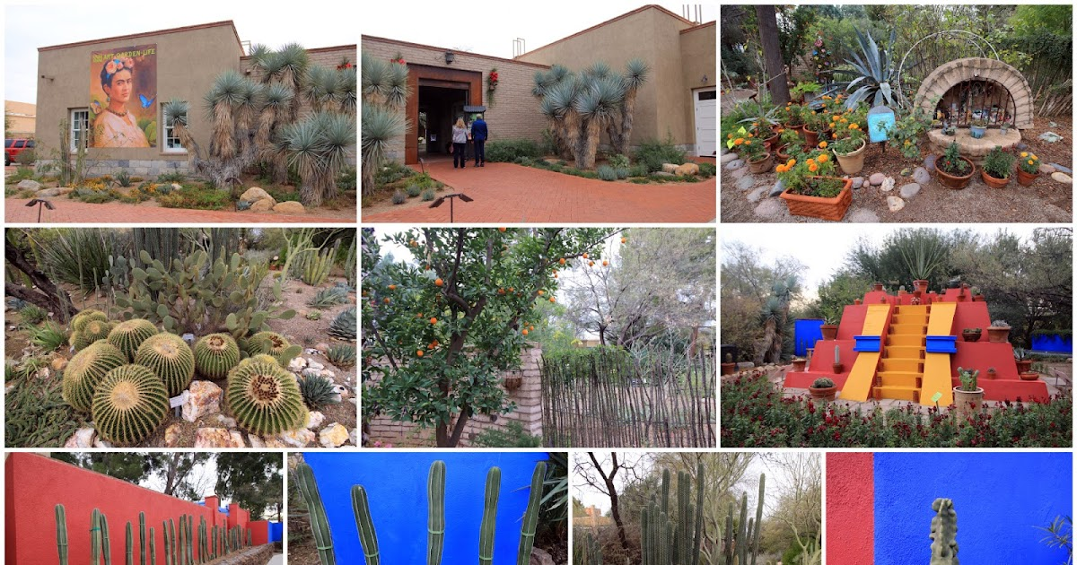 succulents and more arizona 2016 day 2 tucson botanical garden degrazia gallery in the sun. Black Bedroom Furniture Sets. Home Design Ideas